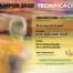 CB Calella - Campus Tecnificació CB Calella 2020